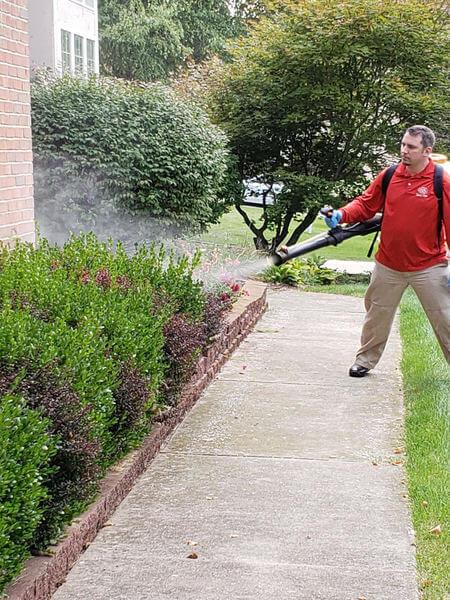 Dangerous Mosquito-Borne Virus Reported in Saginaw, MI