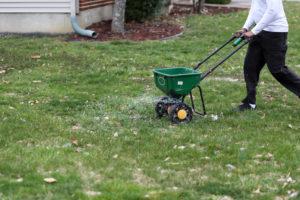 seeding and fertilizing
