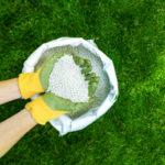 lawn fertilizer schedule