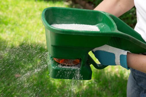 How to Choose the Best Summer Fertilizer for Grass